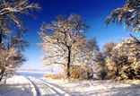 Feldmark im Winter